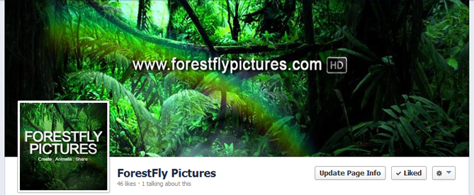 ForestFly Pictures Facebook Page